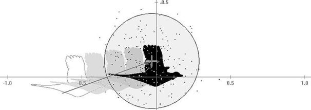 Trefferbild des Analysemodus im ST-2